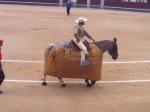 Horse... sad!